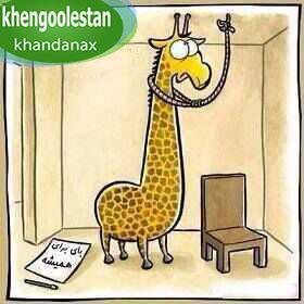 khengoolestan_khandanax (6)