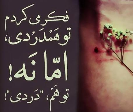 afsongar_khengoolestan_8_bahman_1395