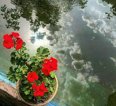 khengoolestan_post_maria_1395_2